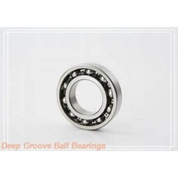 619/500F1 Deep groove ball bearings